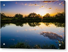 Sonoran Desert Sunset Reflection Acrylic Print