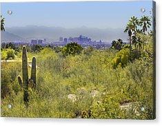 Sonoran Desert With Phoenix Skyline Acrylic Print