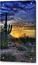 Sonoran Sunrise  Acrylic Print by Saija  Lehtonen