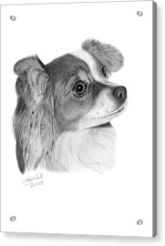Acrylic Print featuring the drawing Sophie - 013 by Abbey Noelle