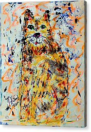 Sophisticated Cat 3 Acrylic Print