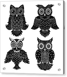 Sophisticated Owls All 4 Acrylic Print by Kyle Wood