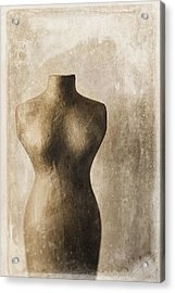 Sophistication II Acrylic Print by Amy Weiss