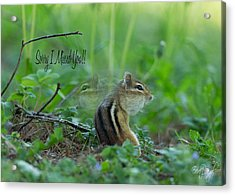 Sorry I Missed You Acrylic Print by Everet Regal