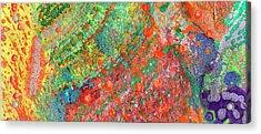 Soul Map II Acrylic Print