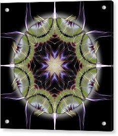 Soul Star Immortal Treasures Acrylic Print