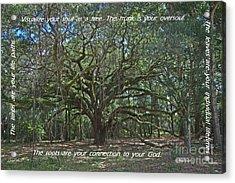 Soul Tree Acrylic Print