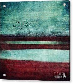 Soulscape Acrylic Print by Priska Wettstein