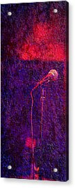 Acrylic Print featuring the photograph Sound Bites Niche Art Microphone by Bob Coates