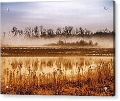 Sounds Of Silence Acrylic Print by Tom Druin