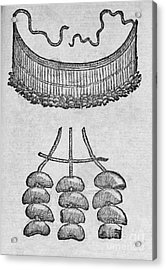 Soursop Seed Necklace, 16th Century Acrylic Print by Middle Temple Library