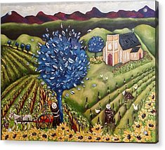 South Australia Vineyard Acrylic Print by Annakie Jordaan