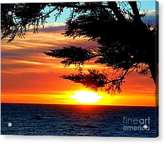 South Bay Sunset Acrylic Print by Steed Edwards