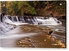South Chagrin River Acrylic Print