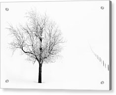 South Dakota Winter Acrylic Print
