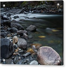 South Fork American River Acrylic Print by Mitch Shindelbower