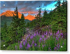 South Fork Trail Near Eagle River Acrylic Print