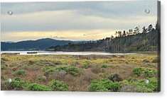 Acrylic Print featuring the photograph South Humboldt Bay by Jon Exley