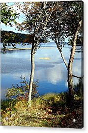 South Ingonish Afternoon Acrylic Print by Janet Ashworth