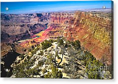 South Rim From The Butte Acrylic Print