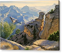 South Rim Morning Acrylic Print