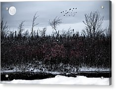 South To The Moon Acrylic Print