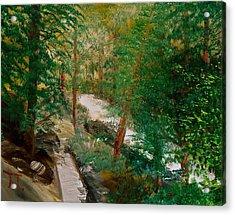 South Trail Cache La Poudre Acrylic Print by Troy Thomas