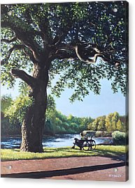 Southampton Riverside Park Oak Tree With Cyclist Acrylic Print by Martin Davey