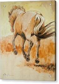 Southbound Acrylic Print by Tracie Thompson