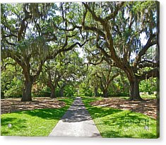 Southern Charm Acrylic Print by Eve Spring