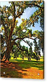 Southern Comfort Painted Acrylic Print by Steve Harrington
