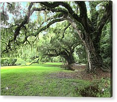Southern Comfort Acrylic Print by Silvie Kendall