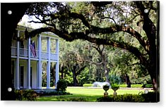 Southern Comfort Acrylic Print by William Tucker