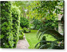Acrylic Print featuring the photograph Southern Garden Charleston South Carolina by Vizual Studio