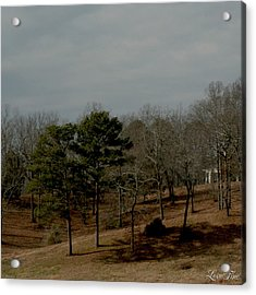 Acrylic Print featuring the photograph Southern Landscape by Lesa Fine