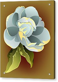 Southern Magnolia Blossom Acrylic Print by MM Anderson