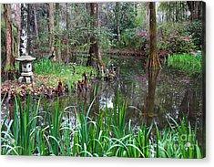 Southern Serenity Acrylic Print by Carol Groenen