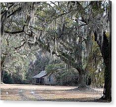 Southern Shade Acrylic Print by Al Powell Photography USA