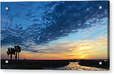 Southern Sky Acrylic Print by Lisa Campbell
