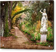 Southern Strength Acrylic Print by William Beuther
