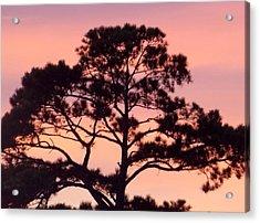 Southern Sundown Acrylic Print