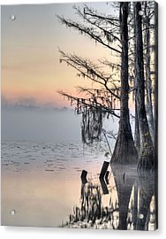 Southern Sunrise  Acrylic Print by JC Findley