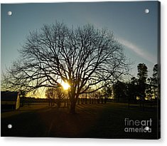Southern Sunrise Special Acrylic Print