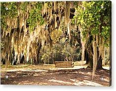 Southern Tree Acrylic Print