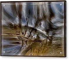 Southparkscape 2010 Acrylic Print