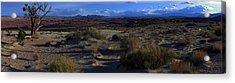 Southwest Snake Canyon Acrylic Print by Maria Arango Diener