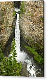 Spahats Falls Waterfall In Wells Gray Provincial Park Acrylic Print by Elena Elisseeva