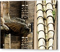 Spain - Seville Cathedral - Gargoyles Acrylic Print by Jacqueline M Lewis