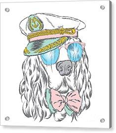 Spaniel In The Captains Cap. Vector Acrylic Print