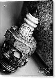 Spark Plug  1 Acrylic Print by Wilma  Birdwell